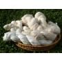 Fils et laines