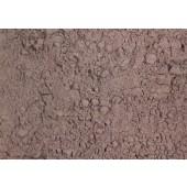 Acacia extract - 25 gr