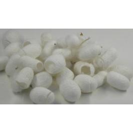 Cocons de soie évidés